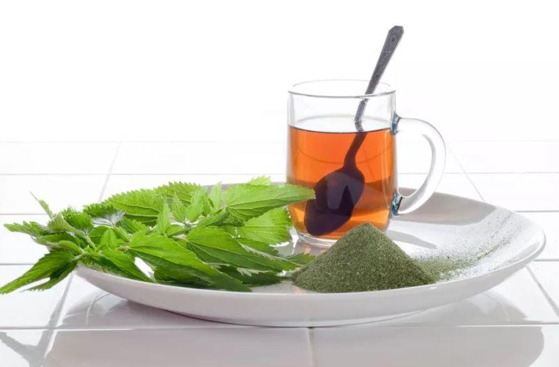 Csalán tea
